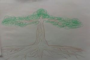 sheltering tree